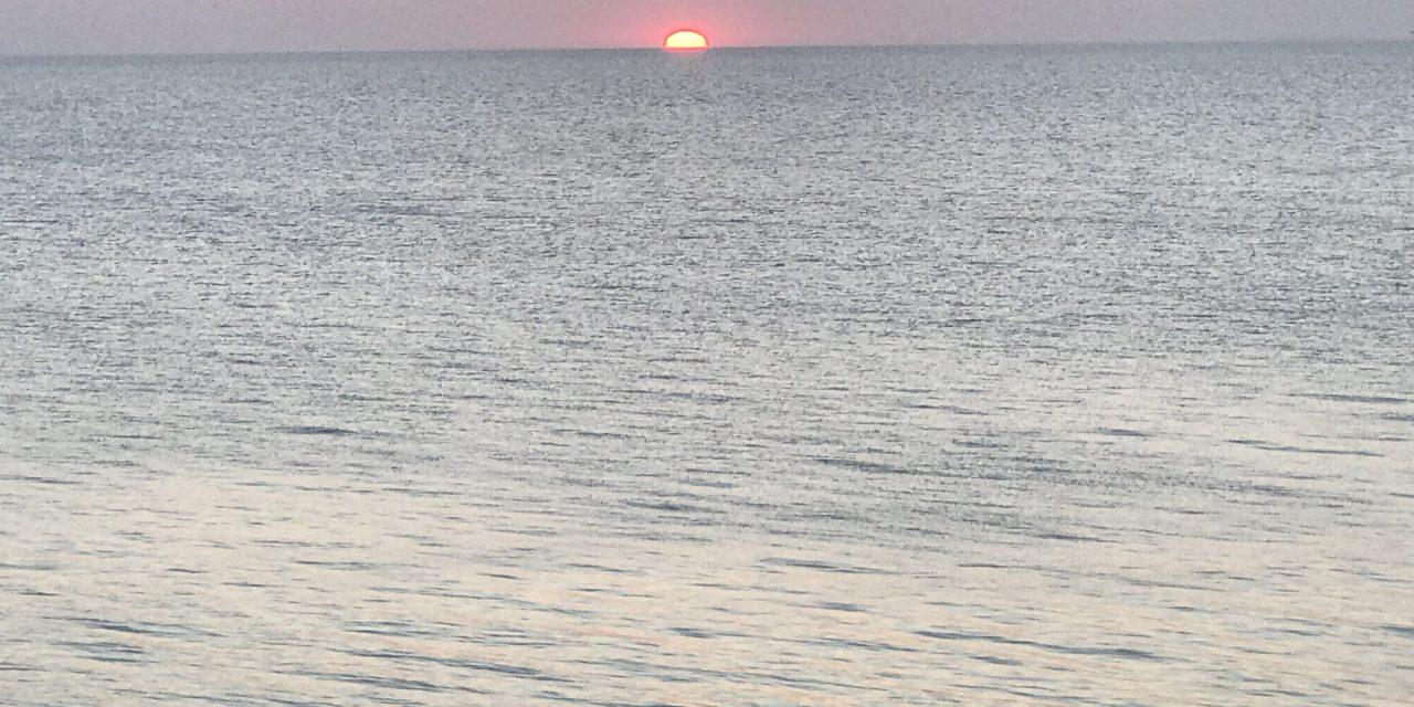 Ekstrem marin hedebølge -plus 8 grader